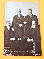 S.A.R. Les Rois De Danemark, Suède, Belgique Et Norvège - Familles Royales