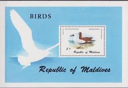 Maldive Uccelli Birds Set MNH - Oiseaux