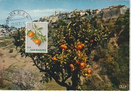 Saint Marin Carte Maximum 1973 Mandarines 838 - Lettres & Documents