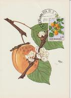Saint Marin Carte Maximum 1973 Abricots 845 - Lettres & Documents