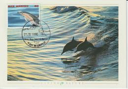 Saint Marin Carte Maximum 1996 Dauphin 1439 - Lettres & Documents