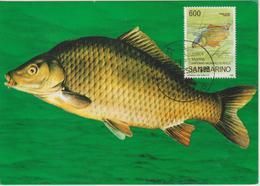Saint Marin Carte Maximum 1985 Peche Carpe 1122 - Lettres & Documents