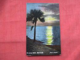 The Lone Palm   Bermuda    Ref  3485 - Bermudes