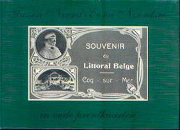 « Tussen Noord-Ee En Noordzee In Oude Prentkaarten – Souvenir Du Littoral Belge – COQ-SUR-MER » BALLEGEER, J. ----> - Livres