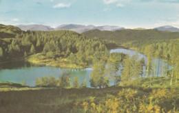 AN26 Tarn Hows - Cumberland/ Westmorland