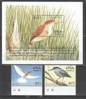 J1017 MALDIVES BIRDS FAUNA CINNAMON BITTERN GREEN HERON FAIRY TERN BL+SET MNH - Oiseaux