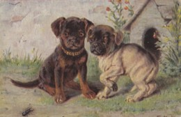 AR41 Artist Signed M Stocks - 2 Puppy Dogs - Dogs