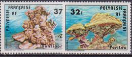 Francese Polinesia Reef MNH - Polinesia Francese