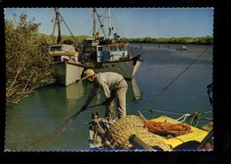 C1684 AUSTRALIA - WESTERN AUSTRALIA - ROEBOURNE - PRAWNING BOIATS 1969 - Altri