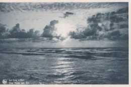 De Haan Aan Zee - Coq Sur Mer - La Plage Fleurie - Pas Circulé - Nels - TBE - De Haan