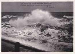 De Haan Aan Zee - Coq Sur Mer - Tekst Van - Texte De F Coppée - Pas Circulé - Nels - TBE - De Haan
