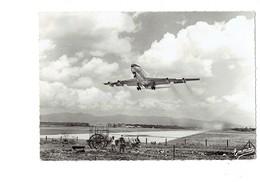"""Cpm - GUADELOUPE - AÉROPORT - Décollage Du Boeing 707 """"Chateau De Blois"""" - Avion AIR FRANCE Attelage Boeufs - Avions"""