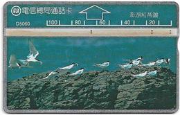 Taiwan - Bureau Of Telecomm. - LG - Birds - Seagulls - 510G - 1995, 100U, Used - Taiwan (Formosa)