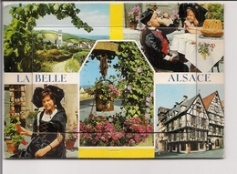 Carte Postale Editions Yvon à Système 12 Petites Vues En Accordéon -  LA BELLE ALSACE - Alsace