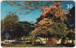 BRASIL A-595 Magnetic Telegoias - Plant, Tree - Used - Brazil