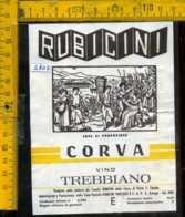 Etichetta Vino Liquore Trebbiano 1980 Fatt. Rubicini-Corva Di Porto S. Elpidio FM - Etichette