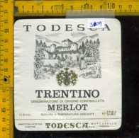 Etichetta Vino Liquore Merlot Cantine Todesca - Mattarello TN - Etichette