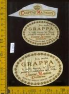 Etichetta Vino Liquore Grappa - Carpenè Malvolti - Conegliano TV - Etichette