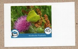 BRD - Privatpost - Nordkurier - Schmetterling Butterfly / Postillion (Colias Crocea) - Papillons