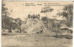 CONGO BELGA ENTERO POSTAL SELLO ADICIONAL DESPRENDIDO TERMITERO INSECTO ANT TERMITE - Insectos