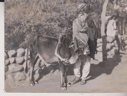INDE INDIA BUFFEL  +- 10*8CMFonds Victor FORBIN (1864-1947) - Fotos