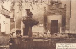 1900'S CPA SPAIN. CORDOBA. PLAZA SAN ANDRES, PORTADA PLATERESCA. SEÑAN FOTO. HAUSER Y MENET, VOYAGEE.- BLEUP - Córdoba