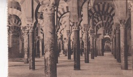 1900'S CPA SPAIN. CORDOBA. INTERIOR DE LA MEZQUITA. SEÑAN FOTO. HAUSER Y MENET.- BLEUP - Córdoba