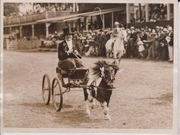 RICHMOND HORSE SHOW MISS REID SHETLAND PONY STARLIGHT OF HEMINGFROD    +- 20*15CMFonds Victor FORBIN (1864-1947) - Non Classificati
