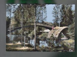 CP (87) Aixe-sur-Vienne  - Pont Romain - Aixe Sur Vienne