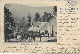 67 N LOT 1 De 5 Belles Cartes Du Bas-Rhin , état Extra - Postcards