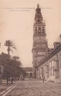 1900'S CPA SPAIN. CORDOBA. PATIO DE LOS NARANJOS Y TORRE DE LA CATEDRAL. SEÑAN FOTO. HAUSER Y MENET.- BLEUP - Córdoba