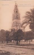 1900'S CPA SPAIN. CORDOBA. PATIO DE LOS NARANJOS Y EXTERIOR DE LA CATEDRAL. SEÑAN FOTO. HAUSER Y MENET.- BLEUP - Córdoba
