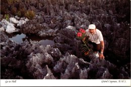 Grand Cayman Hell Man Collecting Flowers - Caïman (Iles)
