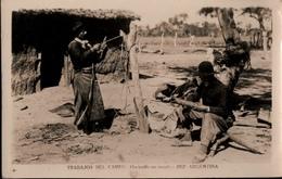 ! Foto Ansichtskarte Trabajos Del Campo, Argentinien, Argentina, 1936 - Argentinien