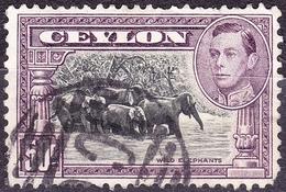 CEYLON 1942 50 Cents Black & Mauve SG394d Used - Ceylon (...-1947)