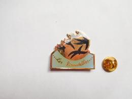 Beau Pin's , Oiseau , Les Hirondelles , Hirondelle - Animals