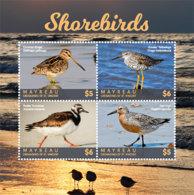 Mayreau  , Grenadines  Of St. Vincent 2018  Fauna  Shorebirds  I201901 - St.Vincent & Grenadines