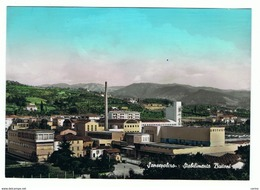 SANSEPOLCRO (AR):  STABILIMENTO  BUITONI  -  FOTO  A  COLORI  -  FG - Industrie