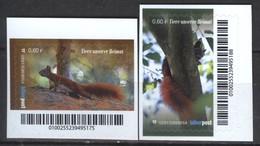 Biber Post 2 Mkn Aus Markenheftchen Tiere Unserer Heimat (2) Eichhörnchen (0,60- 0,60) G885 - Private & Local Mails