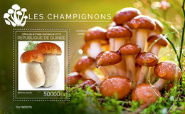 Guinea. 2019 Mushrooms. (0207b)  OFFICIAL ISSUE - Funghi