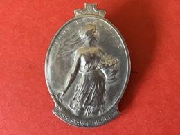 MEDAILLE ZILVER - POUR LA BELGIQUE L'ASSISTANCE DISCRETE - Gesign DEVREESE - 1914 - 1915 ANNEES TERRIBLES - Belgique