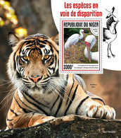Niger. 2019 Endangered Species. (0309b)  OFFICIAL ISSUE - Cigognes & échassiers
