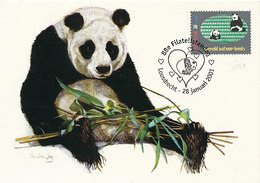 D37636 CARTE MAXIMUM CARD RR TRIPLE 2001 NETHERLANDS - GIANT PANDA WWF WNF - SPEC. CANCELLATION CP ORIGINAL - Cartes-maximum