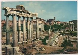 (103) Forum Ramain - Citta Del Vaticano - Vatican