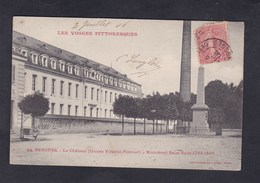 Vente Immediate Senones (88) Le Chateau Usines Vincent Ponnier Monument Salm ( Cheminee Usine Homeyer Ehret) - Senones
