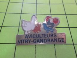 715a Pins Pin's / Rare & Belle Qualité THEME ANIMAUX / COQ POULE LAPIN PIGEON AVICULTEURS VITRY-GANDRANGE - Animals