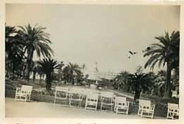180719D - PHOTO 1935 - 06 NICE Jardin Albert Ier - Fontaine Pièce D'eau - Parks
