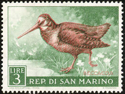 San Marino. 1960 . Bécasse Des Bois.  Eurasian Woodcock - Cigognes & échassiers