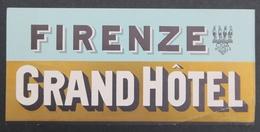 Ancienne étiquette Bagage Malle Valise GRAND HOTEL FIRENZE Old Original Luggage Label - Etiquettes D'hotels