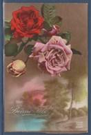 = Carte Postale Bonne Fête Des Roses Au Dessus D'un Paysage Adressé Pour Des Souhaits (Ste Catherine) Posté 24.11.21 - Autres